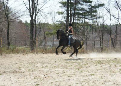 diva-under-saddle-training-4-2012
